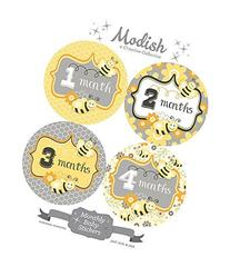 12 Monthly Baby Stickers, Girl, Bumble Bees, Honey Bees,
