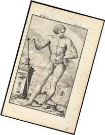 2 Rare Antique Anatomical Prints-MAN-NAKED-MODEL-Spigelius-