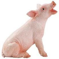Safari 245829 Sitting Piglet Animal Figure- Pack of 12