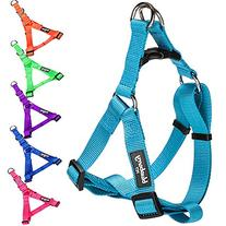 Blueberry Pet 7 Colors Step-in Classic Dog Harness, Chest