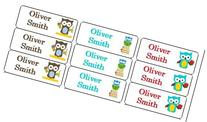 30 Personalized Waterproof Name Labels Boy Owl Back To