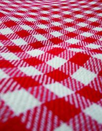 Camco 42803 Picnic Blanket