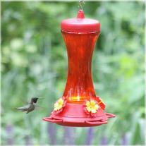 Perky-Pet 476  Glass 20-Ounce Hummingbird Feeder