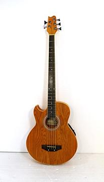 5 String Acoustic Electric Cutaway Bass Guitar