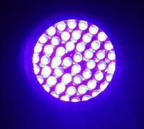 395 Nm 51 Uv Ultraviolet LED Flashlight Blacklight 3 AA