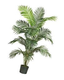 Nearly Natural 5260 Paradise Artificial Palm Tree, 5.5-Feet