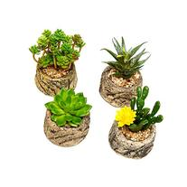 Assorted Set of 4 Green Artificial Faux Mini Succulent
