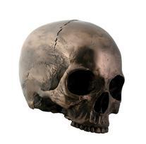 Bronze Skull Head Statue