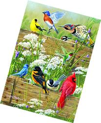 Buffalo Games Large Piece Family: Songbird Menagerie - 300
