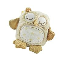 Cloud b Nighty Night Owl On The Go Travel Sized White Noise