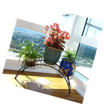 Elegant Arch Design Black Metal Plant Stand / Flower Pots