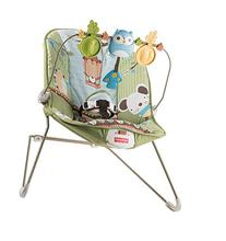 Fisher-Price Forest Fun Bouncer, Green Grove