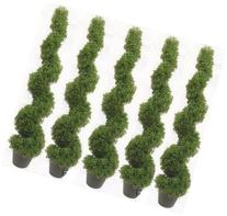 Five 4 Foot 2 Inch Artificial Boxwood Spiral Topiary Trees