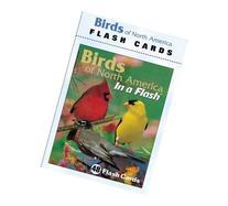 Impact Photographics IMP2FLC Flash Cards Birds North