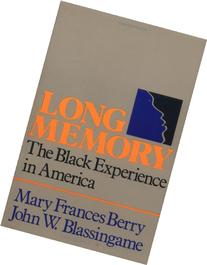 Long Memory : The Black Experience in America