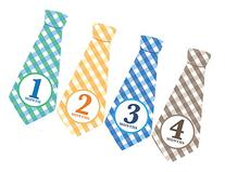 Monthly Baby Ties, Plaid, Baby Boy Month Stickers, Baby