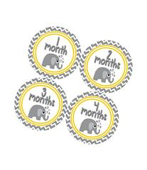 Months in Motion 382 Monthly Baby Stickers Gender Neutral