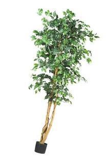 Nearly Natural 5209 Ficus Silk Tree, 6-Feet, Green