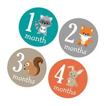 Pinkie Penguin Woodland Animals Baby Monthly Stickers -