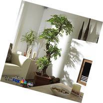 Vert Lifestyle Indoor Handmade Artificial Japanese Fruticosa