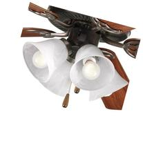 Progress Lighting P2610-20 4-Lt. Ceiling Fan Light