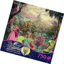 Sleeping Beauty Thomas Kinkade Disney Dreams Collection