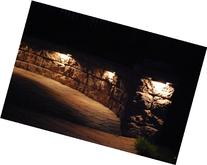 Stainless Steel Paver Wall Light - LED Bronze