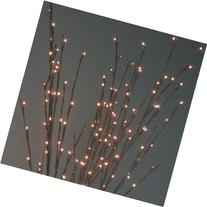 The Light Garden WLWB96 Electric/Corded Willow Branch with
