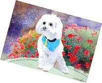A Dog Named Ernest, Archival Print on Paper, Little White