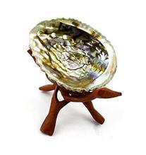 """Generic Abalone Shell & 6"""" Wooden Tripod"""