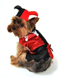 Anit Accessories AP1083-S Jester Dog Costume