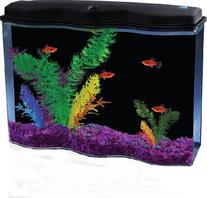 API AquaWave Aquarium Kit with LED Lighting and Internal