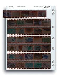 Archival 35mm Size Negative Pages Holds Seven Strips of Five