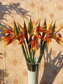 Elefan Artificial Elegant Bird of Paradise - Tropical Flower