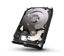 Seagate 250GB Desktop HDD SATA 6Gb/s 16MB Cache 3.5-Inch