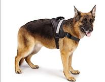 EXPAWLORER Big Dog Harness - Soft Reflective No Pull Black