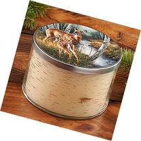 Birch Creek Whitetail Deer 3 Wick Scented Candle by Rosemary