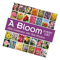 A Bloom Every Day 2016 Wall Calendar: with Over 365 Photos