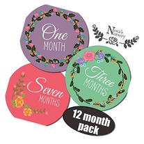 Blossom Baby Girl Monthly Stickers - Shower Gift or