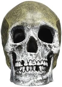 Blue Ribbon Human Skull Tank Ornament