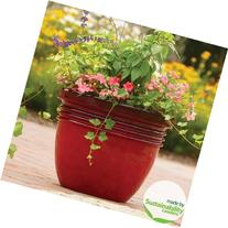 "20"" Large Red Indoor/outdoor Decorative Flower Planter"