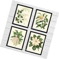 Botanical Flower Print Set of 4 Prints Antique Beautiful