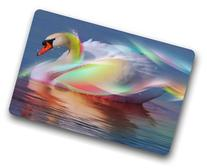 BravoVision Custom the Beautiful Swan Doormat