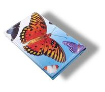 ACME Studios Butterflies Leather Card Case Wallet