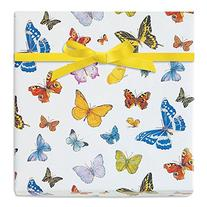 Butterfly Dreams Jumbo Rolled Gift Wrap - 72 square feet