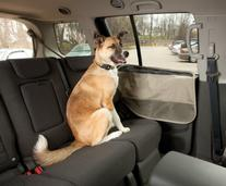 Kurgo Car Door Guard Car Protection from Dogs, Hampton Sand