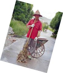 Chan, Street Sweeper, Zhangmutou, China
