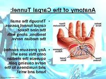 CHIROPRACTIC - CARPAL TUNNEL Powerpoint Lecture - 57 Slides