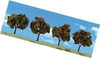 Classics Tree, Apple 2-3