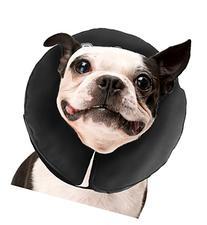 Yellow Dog Design Standard Collar, Medium, Running Horse